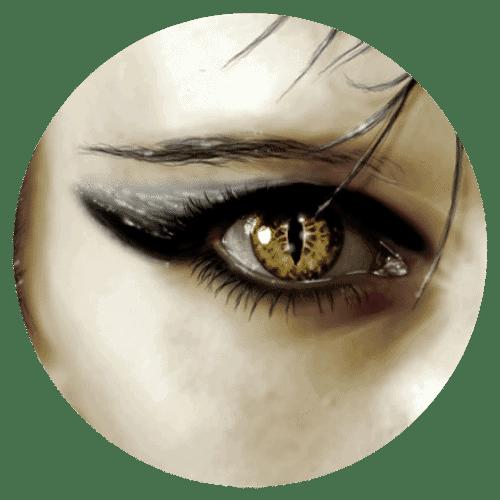 Bildausschnitt Auge
